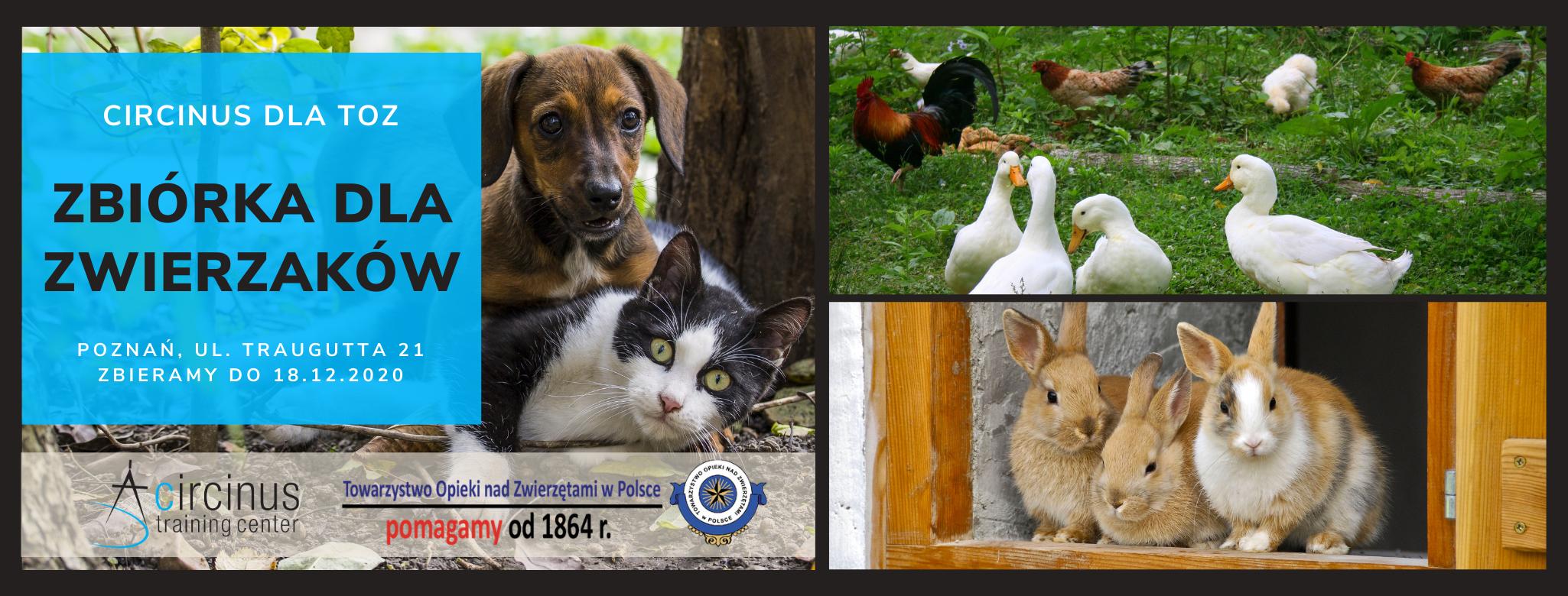 CIRCINUS dla TOZ – łączymy siły dla zwierzaków!